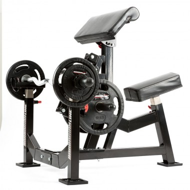Biceps and Triceps Machines