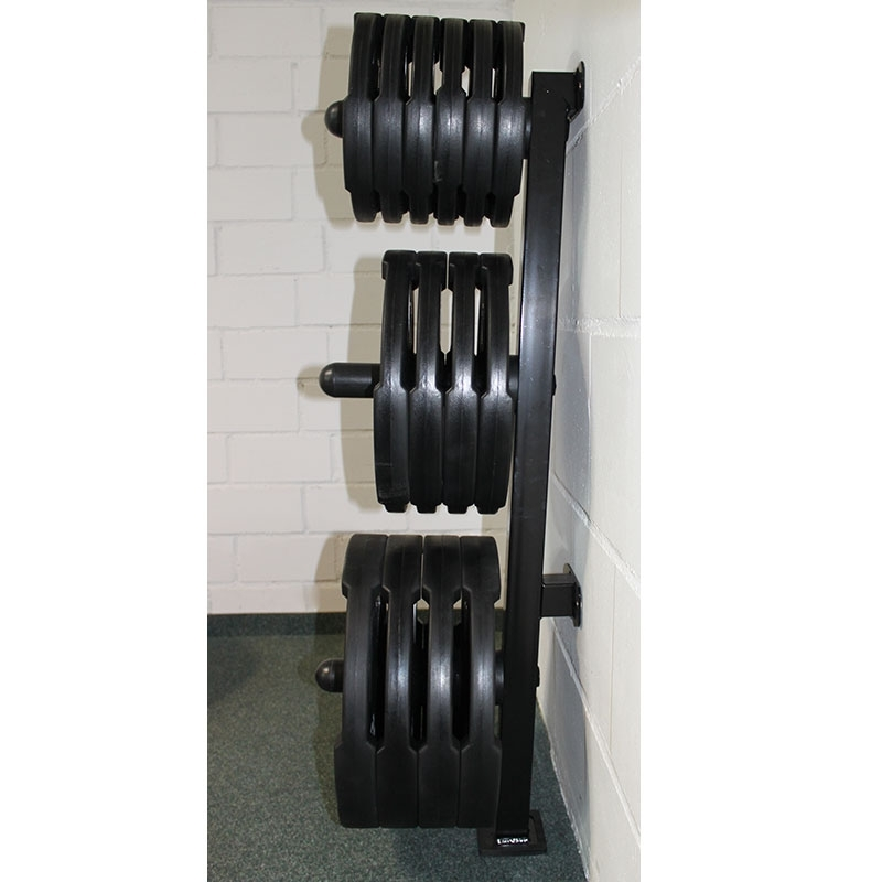 Wall Mounted Olympic Weight Rack 300kg Load Rating Bb