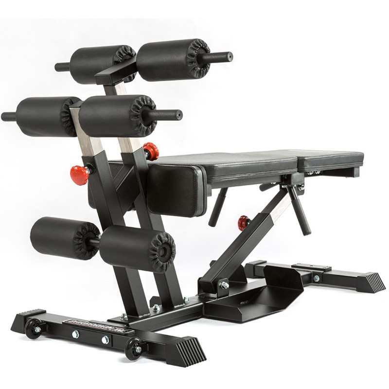 Torso Trainer Barbarian Line Sam S Fitness The