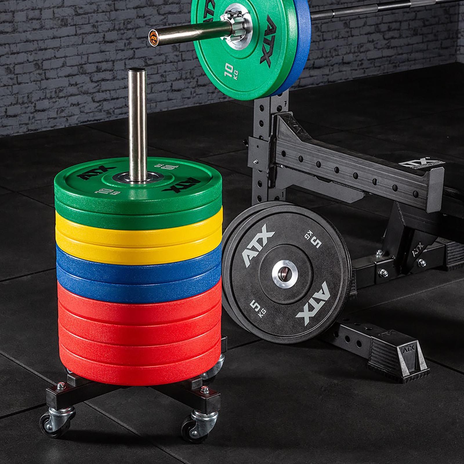 compact bumper plate storage