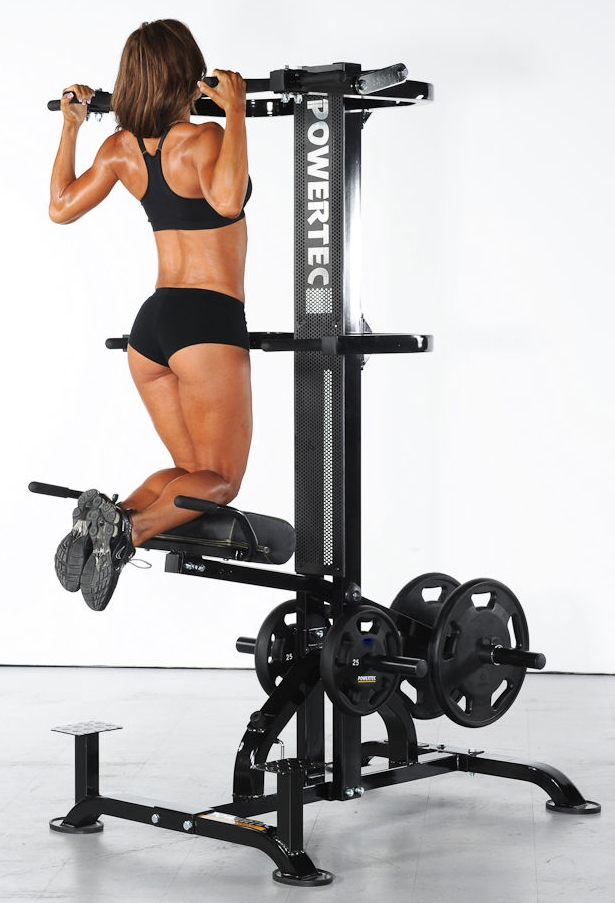 POWERTEC Leverage Assisted Chin Up Dips L-CDA13 Power ...